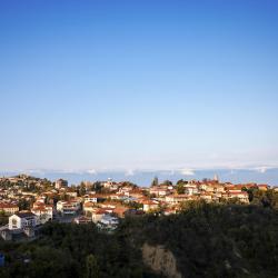 Kakheti 323 gostišč