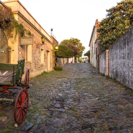 Museo Portugués