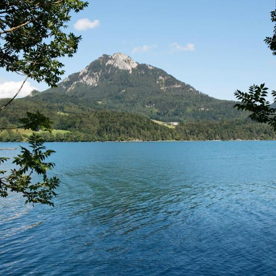 Swimming at Lake Fuschl