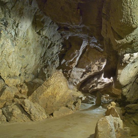 מערות פלקנבורג