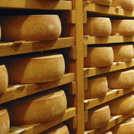 Wycieczki po wytwórniach sera raclette