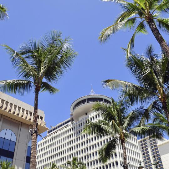 Einkaufen in Waikiki