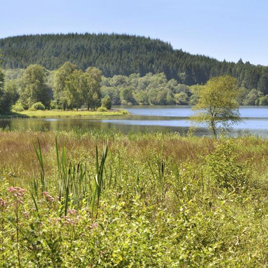 Parque Natural Regional de Morvan