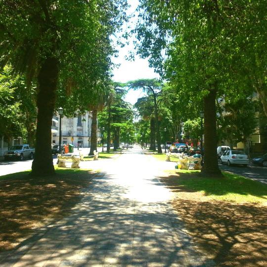 Boulevard Oroño de Rosario
