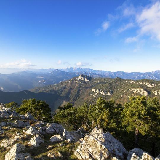 Il Parco Naturale della Zona Vulcanica della Garrotxa