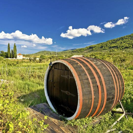 A taste of Dalmatia's wine districts
