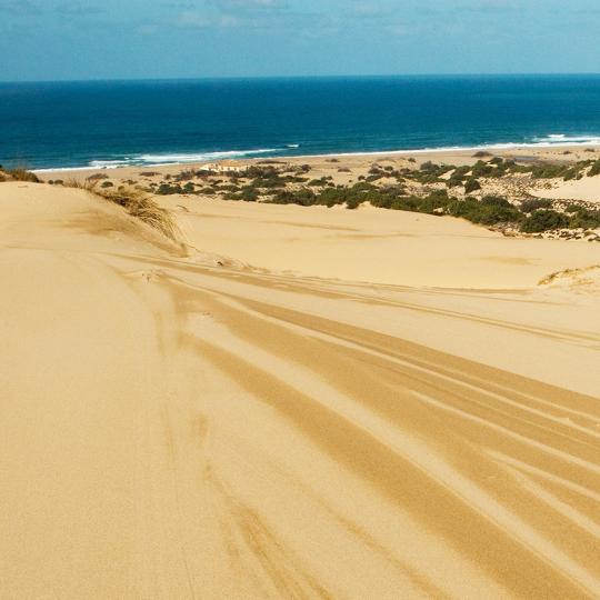 Duny oblasti Piscinas