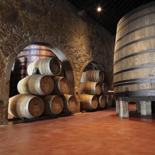 Visita a las bodegas de vino de Oporto