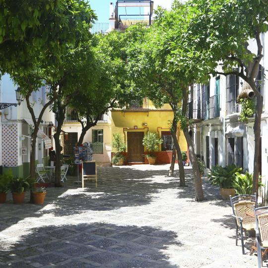 Exploring the Barrio de Santa Cruz district