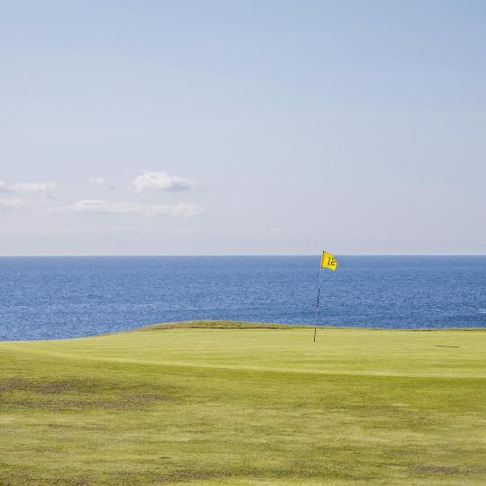 Campos de golf de competición