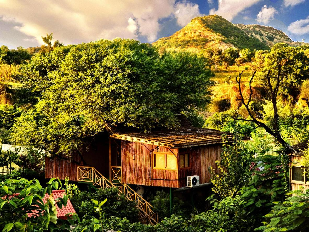 These cabins might look rustic, but inside you'll find every amenity