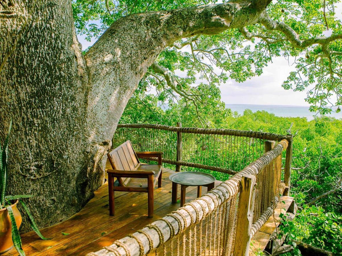 The rustic lookout is surrounded by lush green forest