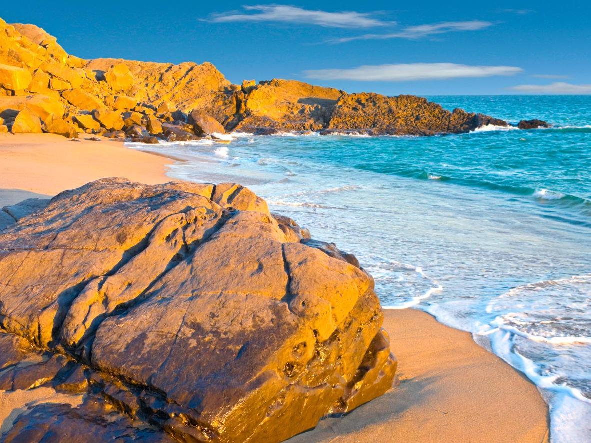 Menikmati pantai cantik dan mengamati kehidupan liari di Oxnard