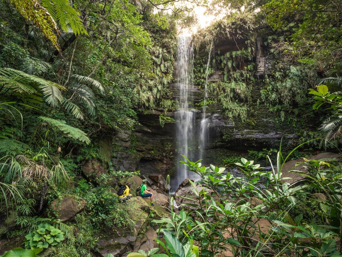 Trek through dense jungle to hidden waterfalls, on the subtropical Yaeyama Islands