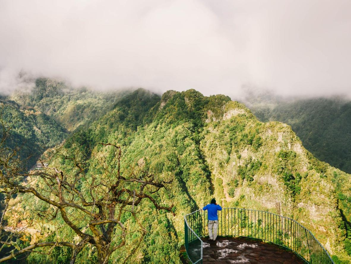 Appreciate Madeira's sunny, subtropical landscape in December