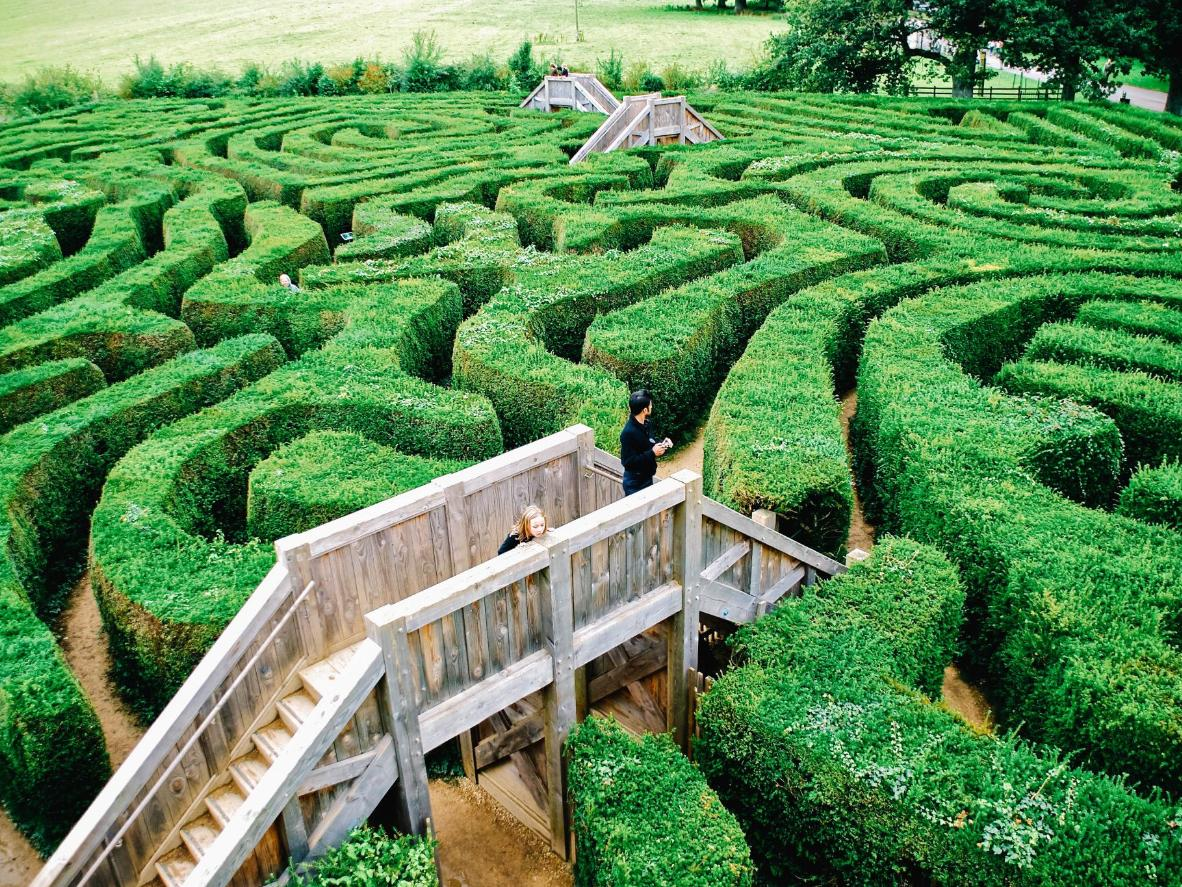A girl lost in Longleat Maze, built in 1757 on the grounds of British stately home, Longleat