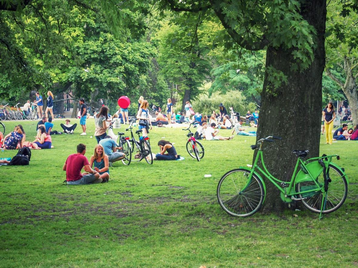 Enjoy a picnic in Bos en Lommer's Erasmus Park
