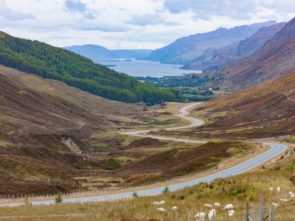 Lochs, montagnes et landes de bruyères dans le parc national des Cairngorms