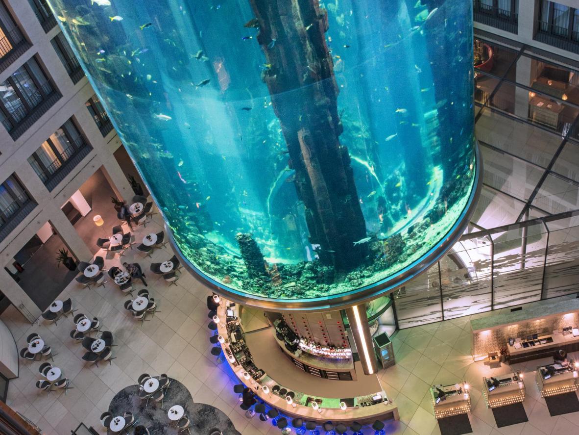Die Atrium Bar mit mehr als 1.500 über sich schwimmenden tropischen Fischen