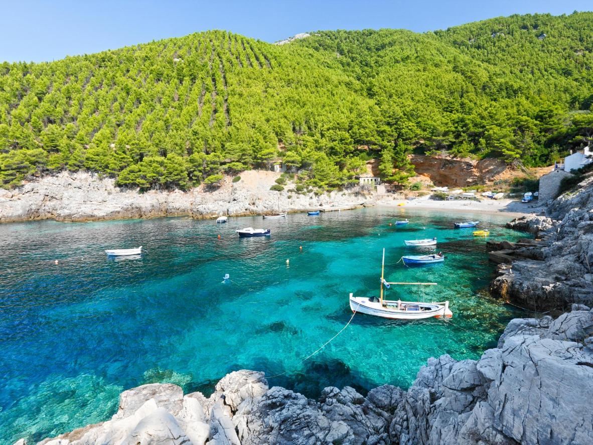 Wyspa Mljet w Dalmacji