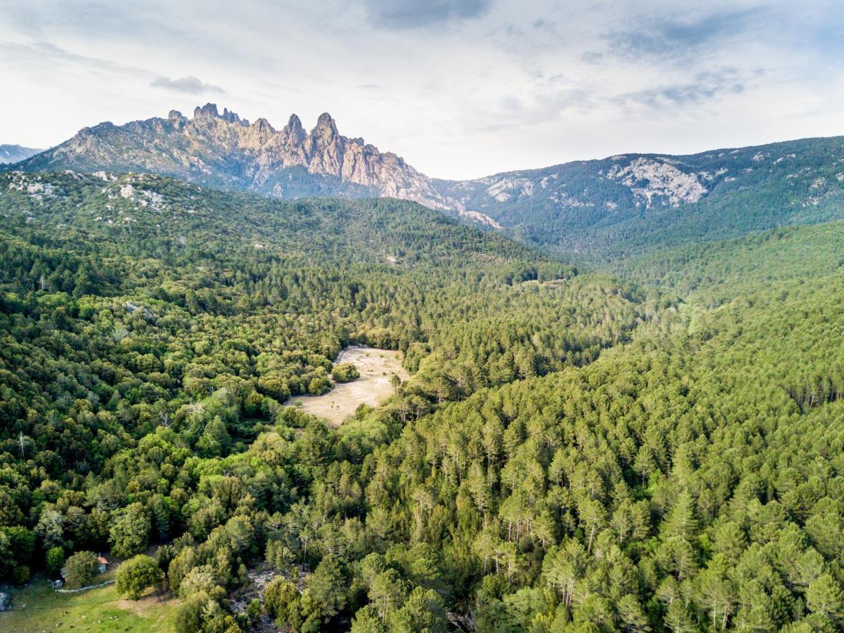 Forêts, cascades et piscines naturelles font la renommée du col de Bavella.