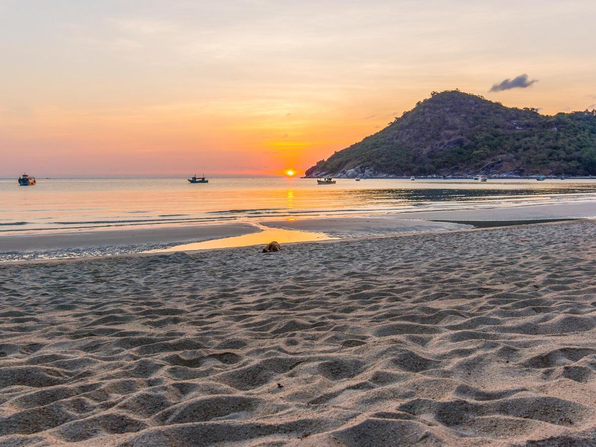 ¿Qué tal un paseo de recién casados por la playa?