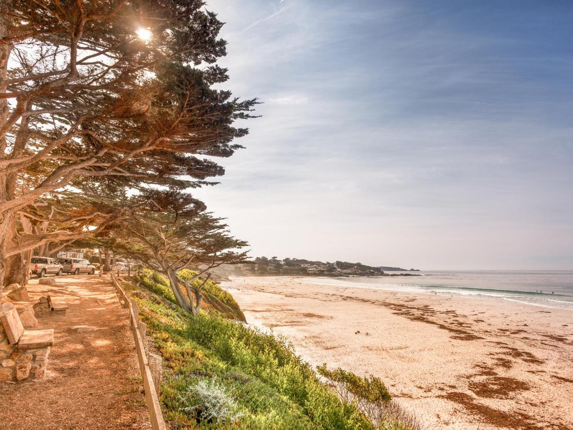 Ivory-white sand and beautiful cypress trees on Carmel's beaches