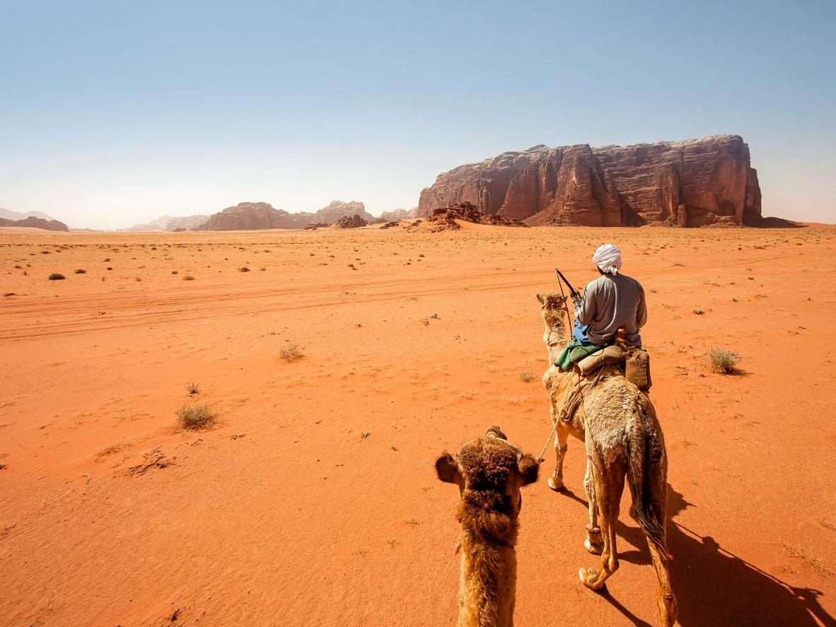 Travel by camel and camp under the stars in the remarkable desert wilderness of Wadi Rum