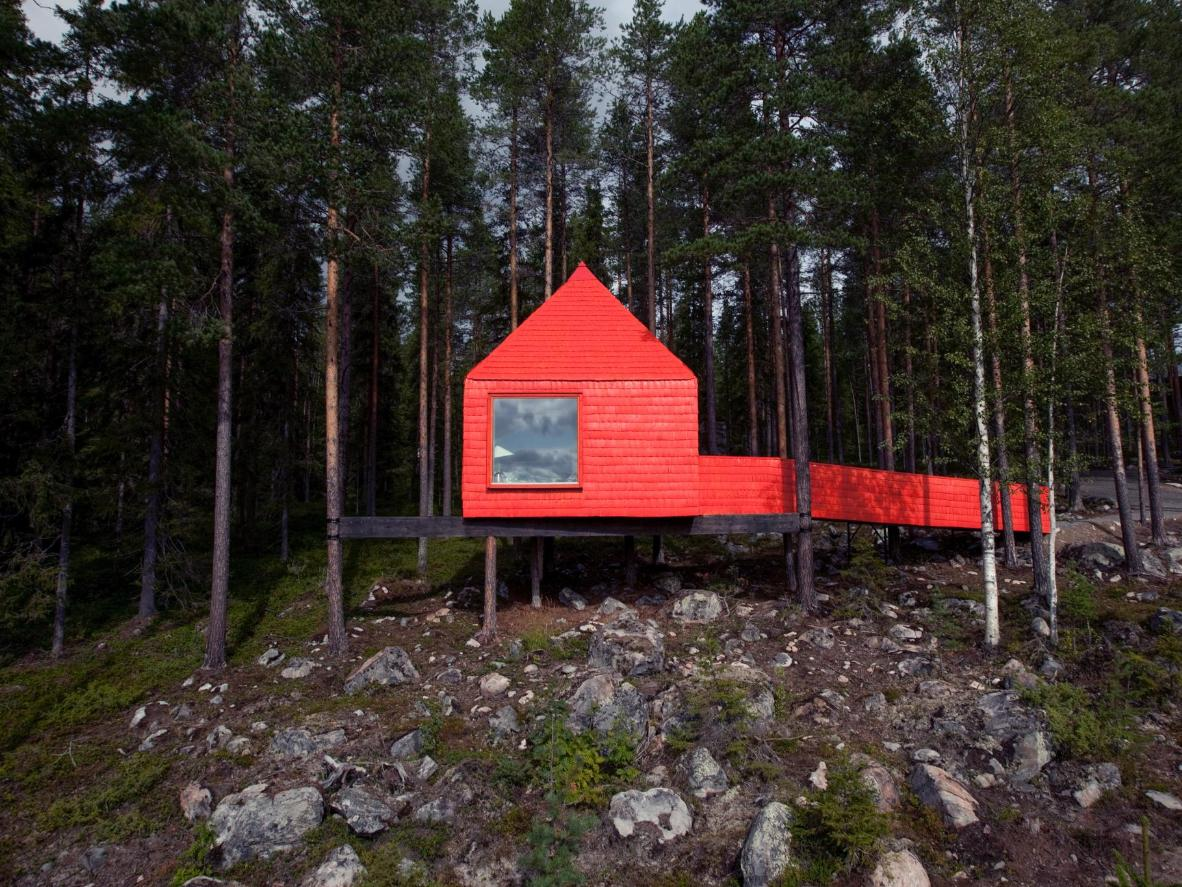 Baladez-vous dans la forêt et admirez votre cabane au loin