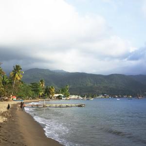 دومينيكا