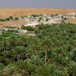 Dār Sawdā'