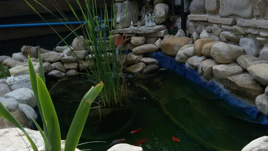 Ca del Lago Misano