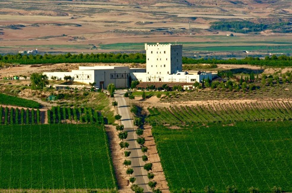 Chateau Pago De Cirsus a vista de pájaro