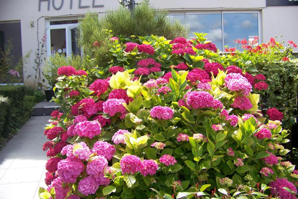 Jardin de l'établissement Hotel Bal