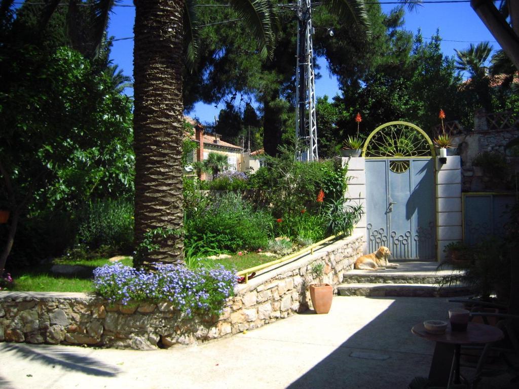 Κήπος έξω από το Apartments Veli Lošinj