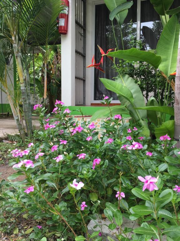 A garden outside Nayai Resort