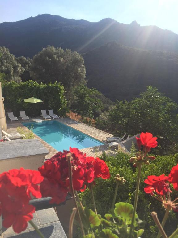 A view of the pool at Villa Les Orangers or nearby