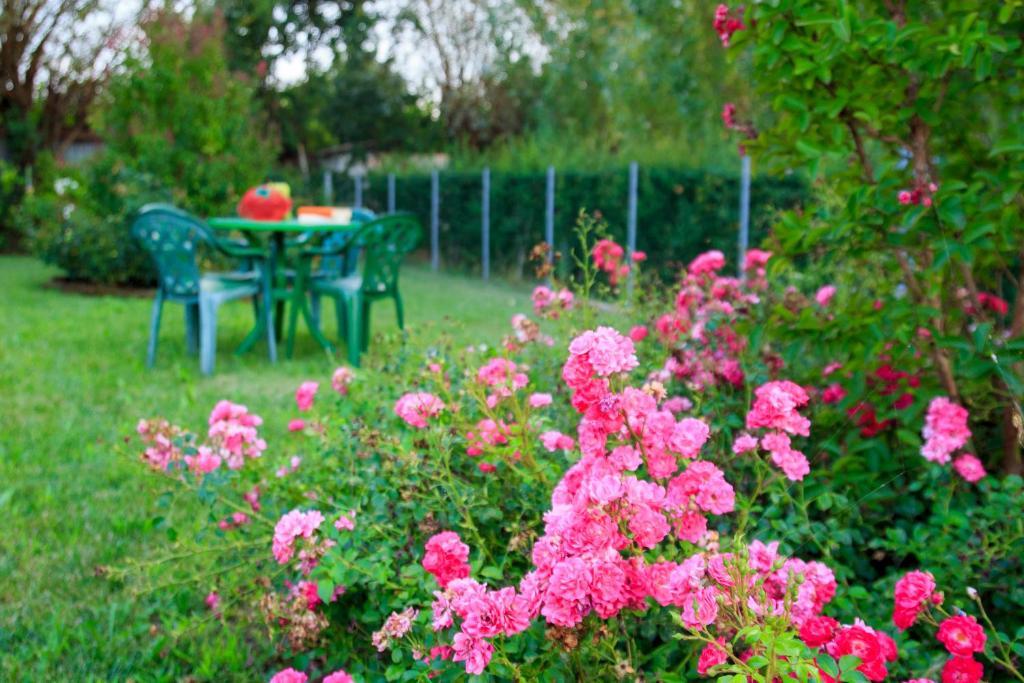 Giardino di B&B Casa Guareschi