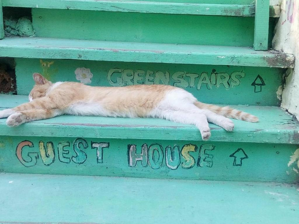 Green Stairs Guest house
