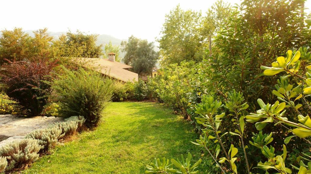 A garden outside Quinta de Santo Aleixo