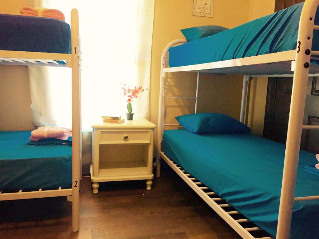 A bunk bed or bunk beds in a room at LA International