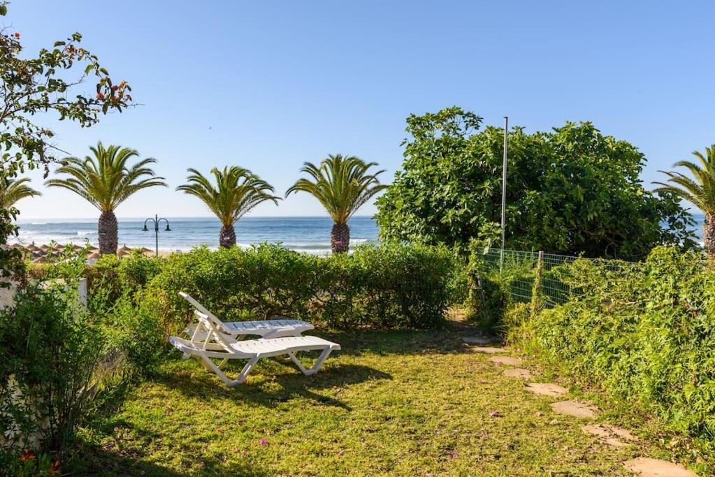A garden outside Casa Sol e Praia