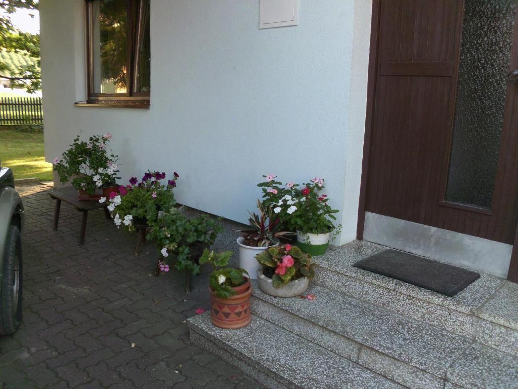 Homestay Tesanovic