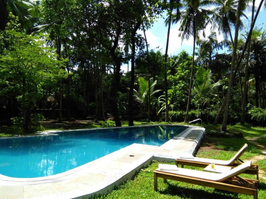 The swimming pool at or close to Botanique Goa
