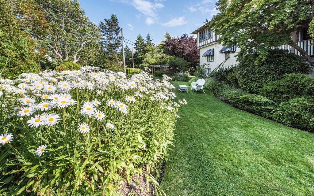 Dārzs pie naktsmītnes Oak Bay Guest House Bed And Breakfast