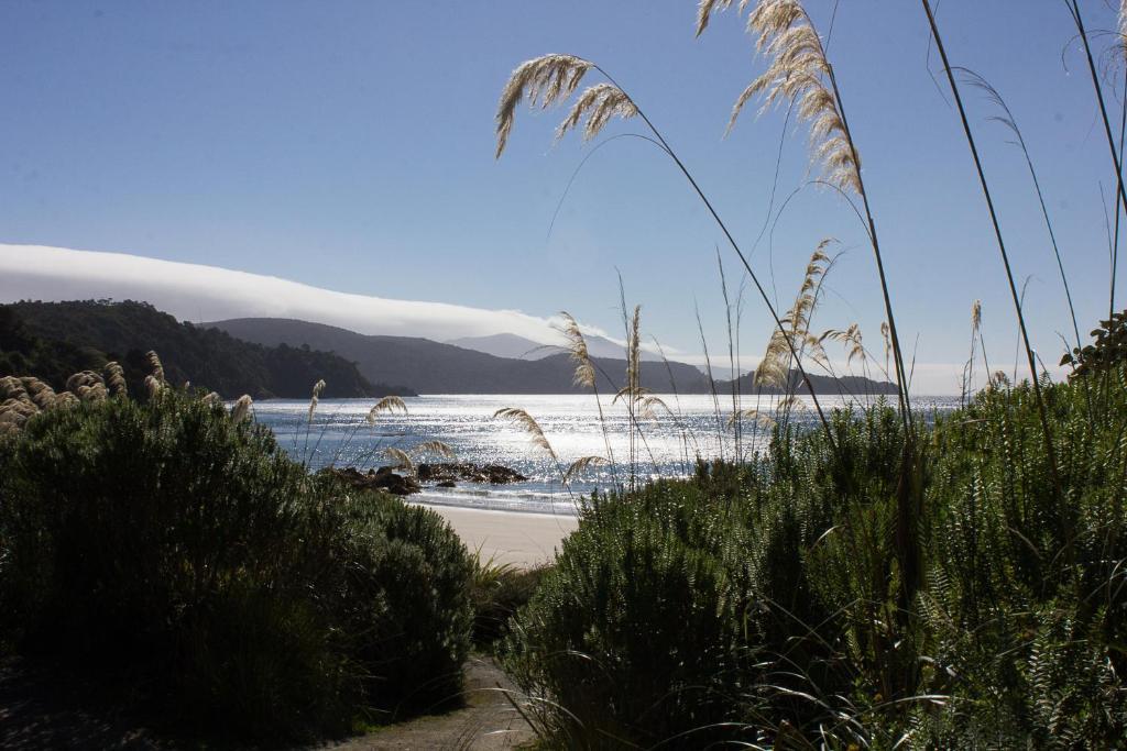 Sails Ashore Lodge