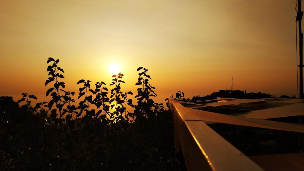 sunset 39 s
