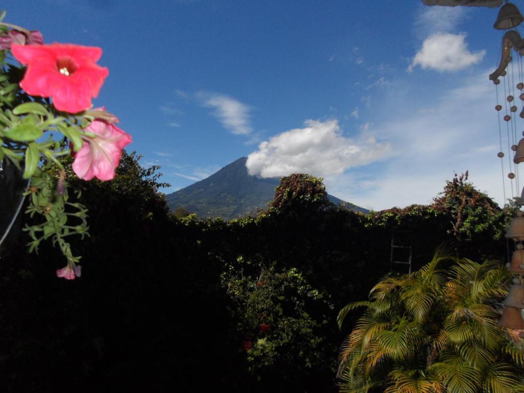 Anal Girl in Antigua Guatemala