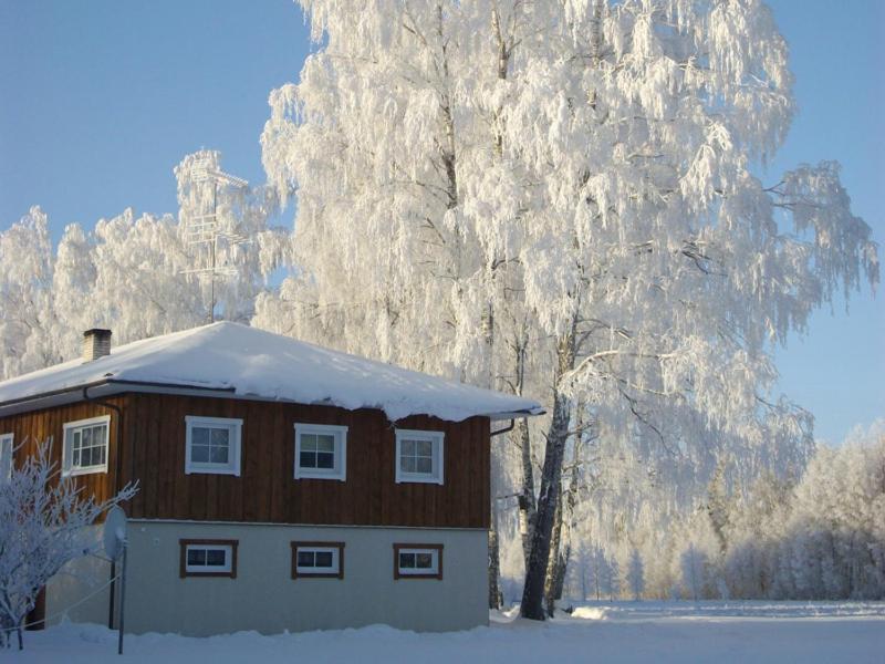 Kuningatalu Holiday Home talvel