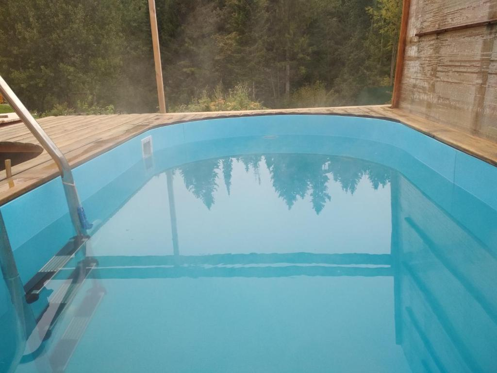 The swimming pool at or near Hostel Yasen